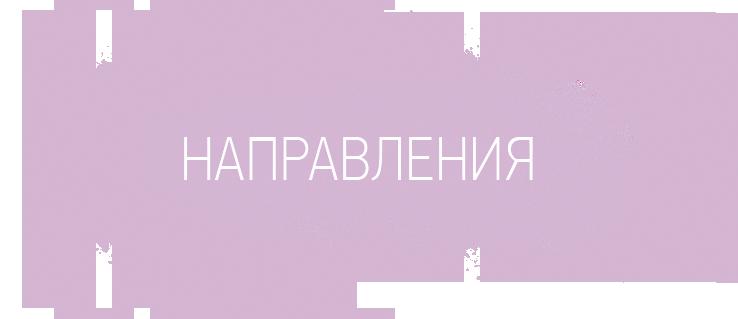 Заголовок секции «Направления»