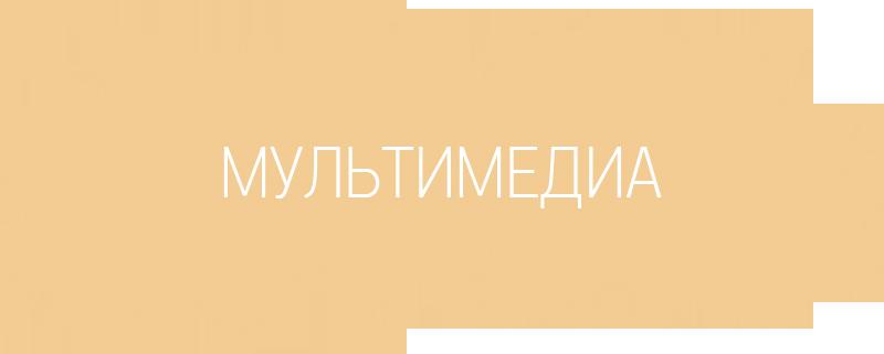 Заголовок секции «Мультимедиа»